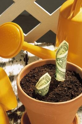 growing_money